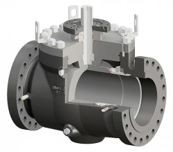 Ball_Trunnion Mounted Top Entry