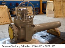 """Trunnion Top Entry Ball Valve 10"""" 600 - RTJ + PUPS 1500 mm"""