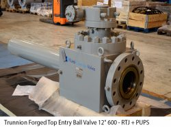 """Trunnion Forged Top Entry Ball Valve 12"""" 600 - RTJ + PUPS 1500 mm"""
