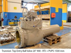 """Trunnion Top Entry Ball Valve 20"""" 900 - RTJ + PUPS 1500 mm"""